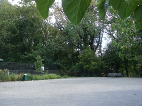 Amenities, Newark Street Dog Park, Washington DC